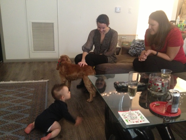 Dogs and Babies on Dogs Dishes and Decor